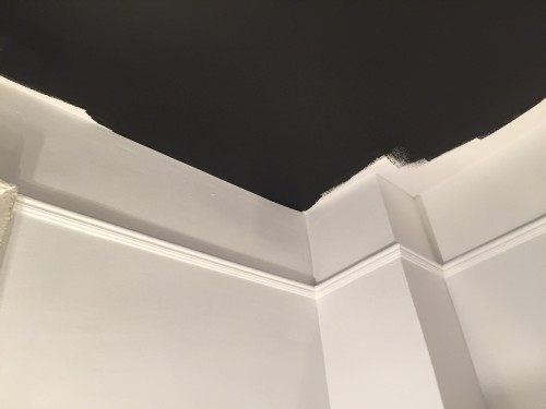 I painted the ceiling first, almost all the way up to the wall.